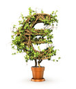 Green plant in form of money sign.
