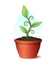 Green plant growing from pot and soil illustration of a organic clay flowerpot poison free Stock Photography