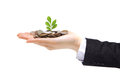 Green plant sprouting from hand with money Royalty Free Stock Photo