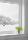 Green plant and winter landscape seen through the window Royalty Free Stock Photo