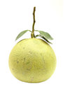 Green pomelo fruit Royalty Free Stock Photo