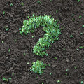 Green question mark Stock Image