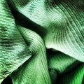 Green rag a dirty microfiber kitchen or towel with wrinkles macro with fabric texture Royalty Free Stock Image