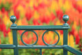 Green railing with colorful blurred flowers in background handrail even more blurrred main colors are orange red yellow and Stock Photos