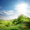 Green ravine and trees lit by the sun Royalty Free Stock Image