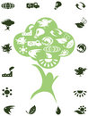 Green recycle icons in the tree Stock Photos