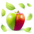 Green red Apple and leafe isolated with clipping path Royalty Free Stock Photo