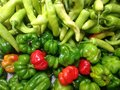 Green and red chiles fresh peppers vegetables raw spicy Royalty Free Stock Photo