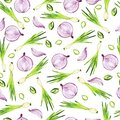 Green and red onion pattern. Watercolor. Royalty Free Stock Photo