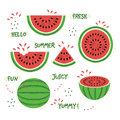 Green and red whole and sliced juicy summer watermelon icons set
