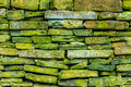 Green rock pattern Royalty Free Stock Photo
