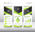 Green Roll Up Banner template and info graphics, stand design,ve