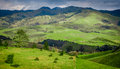 Green Rolling Hills of California near Cambria Royalty Free Stock Photo
