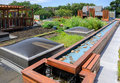 Green roof rooftop garden in urban setting Stock Photo