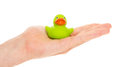 Green rubber duck on a hand Royalty Free Stock Images