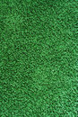 Green rug Royalty Free Stock Images