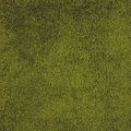 Green rug background woven wool Royalty Free Stock Images