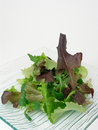 Green salad 2 Stock Photo