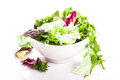 Green salad Stock Image