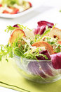 Green salad with crostini and cheese Royalty Free Stock Photo