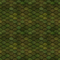 Green Scales Seamless Pattern Stock Image