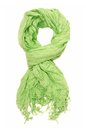 Green scarf Royalty Free Stock Photos