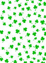 Green Shamrocks on White Stock Image