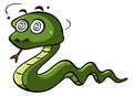 Green snake with dizzy eyes Royalty Free Stock Photo