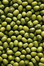 Green soya beans texture Royalty Free Stock Image