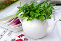 Green spices old kettle on white filled with mint and parsley Royalty Free Stock Images