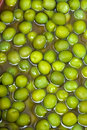 Green spicy olives Royalty Free Stock Photos