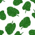 Green spinach leaves on white background seamless pattern.