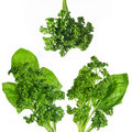 Green spinach and parsley Royalty Free Stock Photography