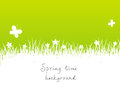 Green spring background with blank space for text Royalty Free Stock Photography