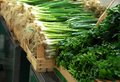 Green spring onion on market bunches of stand outdoor Royalty Free Stock Photo