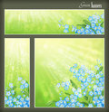 Green spring summer banners set blue flowers blurred sun rays collection square horizontal vertical floral banners forget me not Stock Image