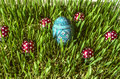 Green sprouted  barley with painted  blue egg and  ladybirds Royalty Free Stock Photo