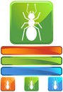 Green Square Icon - Ant Stock Photo