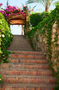 Green stairs with flowers on arch and blue sly Stock Photos
