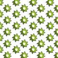 Green star shape pattern floral