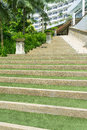 Green steps with layer of grass Stock Photos