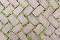 Green stone floor texture pavement design.