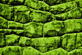 Green stone wall Stock Photo