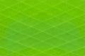 Green Stripes Pattern Background