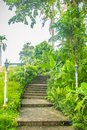 Green summer public park garden with stairs step to blue sky in the cloudy day. Beautiful day light in public park with staircase Royalty Free Stock Photo