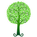 Green summer tree vector swirly covered with lush leaves Royalty Free Stock Photography