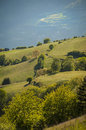 Green sunlit meadows in the alto adigen region of italy Royalty Free Stock Photos