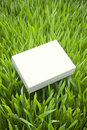 Green sustainable product box a blank of on a grass background Royalty Free Stock Photography