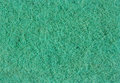 Green synthetics kitchen sponge close up Royalty Free Stock Images