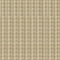 Green and Tan Plaid Fabric Royalty Free Stock Photo